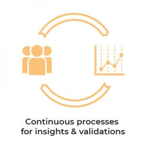 continuous-processes-for-insights-validations